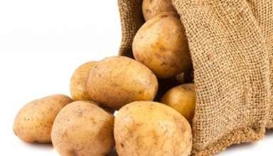 5 thực phẩm phổ biến có thể gây chết người nếu chế biến sai cách